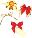Collection of bows isolated on the white Royalty Free Stock Photo