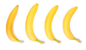 Collection of bright yellow bananas, isolated on a white background. Vitamins. Fresh bananas. Tropical fruits. Stock Image