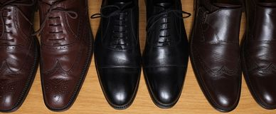 Collection of brown and black classic leather shoes on a shelf Royalty Free Stock Photos