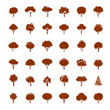 Collection of Brown Trees. Royalty Free Stock Photos