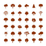 Collection of Brown Trees. Stock Photo