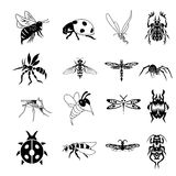 Collection of bug symbols. Vector collection of bug symbols isolated on white background Royalty Free Stock Photography