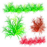 Collection of bushes, cartoon on white background. Stock Photos