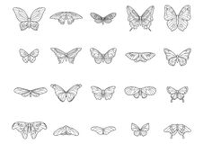 collection of butterflies. Vector illustration decorative design