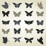 Collection the butterfly Royalty Free Stock Image