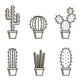 Set of cactuse Stock Photography