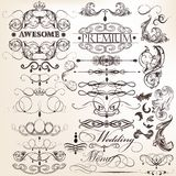Collection of calligraphic decorative elements for design Stock Photos
