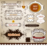 Collection of calligraphic retro design elements and labels Stock Image