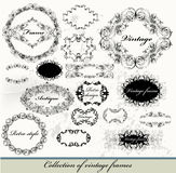 Collection of calligraphic vintage vector frames Stock Image