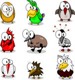 Collection of cartoon birds Royalty Free Stock Image