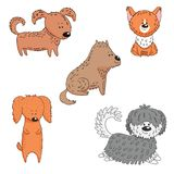 Collection of cartoon dogs. Hand drawn vector illustration with different cute funny cartoon dogs. . Isolated objects on white background. Design concept for Royalty Free Stock Photo