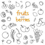 Collection of cartoon fruits and Stock Photo