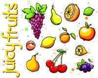 Collection of cartoon juicy fruits Stock Photos