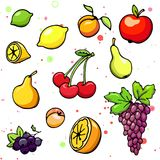 Collection of cartoon juicy fruits and berry. Vector illustration. Set of colorful fruit and berry icons. Isolated on white Royalty Free Stock Photography