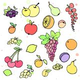 Collection of cartoon juicy fruits and berry. Vector illustration. Set of colorful fruit and berry icons. Isolated on white Royalty Free Stock Photo