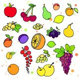 Collection of cartoon juicy fruits and berry. Vector illustration. Set of colorful fruit and berry icons. Isolated on white Stock Photography