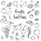 Collection of cartoon juicy fruits and berry. Vector illustration. Set of colorful fruit and berry icons. Isolated on white Stock Photos