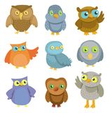 Collection of  cartoon owls Royalty Free Stock Photos