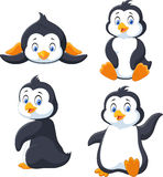 Collection of cartoon penguin isolated on white background Royalty Free Stock Images