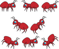 Collection Of Cartoon Vector Ants Stock Photo