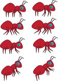 Collection Of Cartoon Vector Ants Royalty Free Stock Image