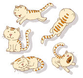 Collection of cat icons, illustratio Stock Image