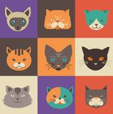 Collection of cat vector icons and illustrations Stock Image