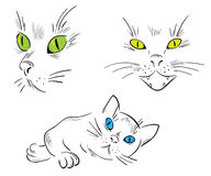 A collection of cats Stock Photography