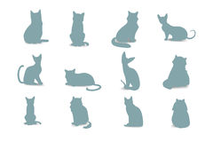 Collection Cats of Different Breeds. Vector isolated cat silhouette Stock Photo