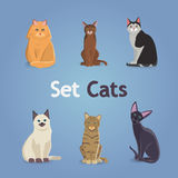 Collection of Cats and Dogs of Different Breeds. Vector Illustration Set. eps 10 Royalty Free Stock Image