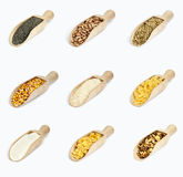 Collection of cereals on wooden spoons  on white Stock Photos