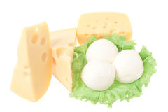 Collection of cheese. Isolated, on white background stock photos
