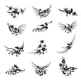 Collection of Chinese bird symbols. Beautiful decorative chinese bird symbols isolated on white background Stock Images