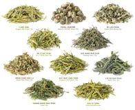 Collection chinoise de thé vert Photos stock