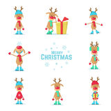 Collection of Christmas reindeer. Flat Vector Illustration. Collection of Christmas reindeer. Vector Illustration Stock Photography