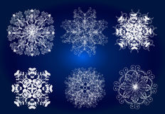 Collection of  Christmas vector snowflakes Stock Image