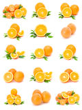 Collection of citrus Stock Photos
