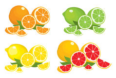 Collection of citrus products - orange, lemon, lime and grapefruit with leaves, isolated on white background. Stock Photography