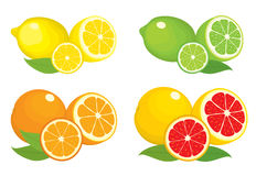 Collection of citrus products - orange, lemon, lime and grapefruit with leaves,  on white background. Stock Image