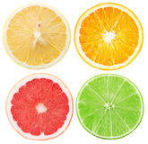 Collection of citrus slices isolated on the white background Stock Photo