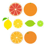 Collection of citrus. Slices of orange, lemon, lime and grapefruit. royalty free stock images