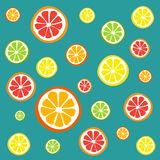 Slices of Citrus fruit. Blue background decorated with slices of orange, lemon, lime and grapefruit all showing segment details Stock Photos