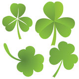 Collection of clovers,  Stock Image