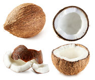 Collection of coconuts isolated on the white background.  Stock Photo