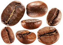 Collection of coffee beans isolated on the white background Stock Image