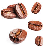 Collection of Coffee beans isolated on white background, closeup Royalty Free Stock Photos