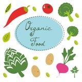Collection colorée d'aliment biologique illustration de vecteur