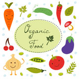 Collection colorée d'aliment biologique illustration libre de droits