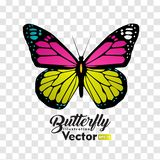 Collection color?e de vecteur d'illustration de papillon illustration de vecteur