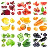 Collection of color fruits and vegetables on white royalty free stock images